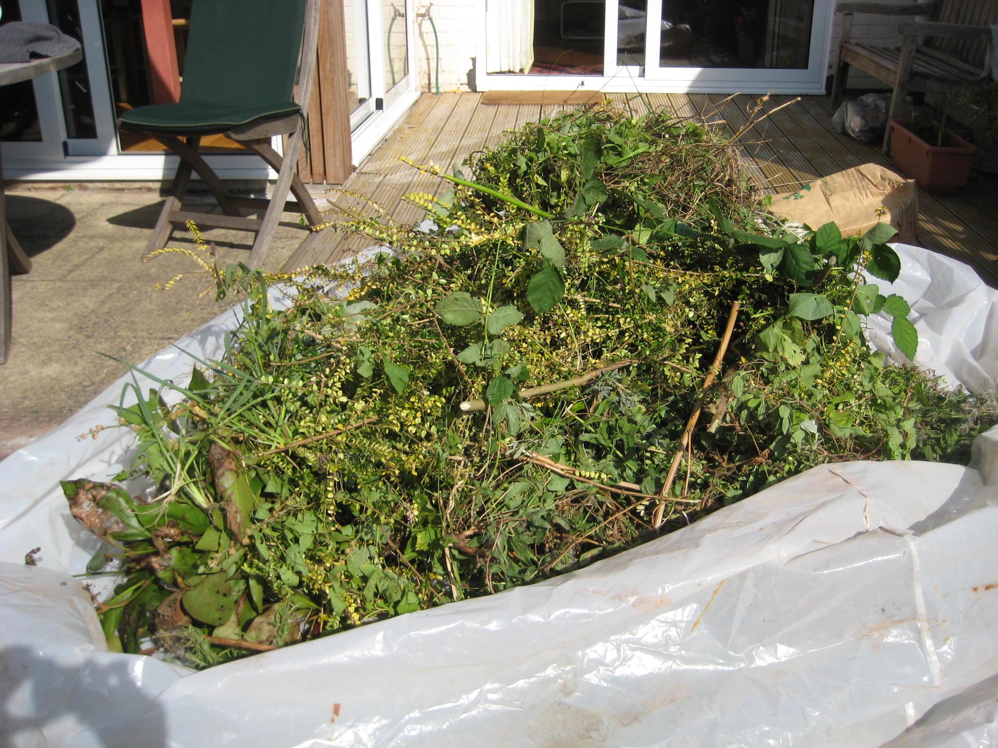 Extended Gardening Metaphor Alert